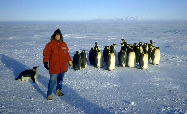 Susan Solomon with her penguin pals. Courtesy National Oceanic and Atmospheric Administration.