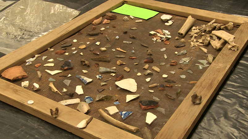 Pottery shards and bones