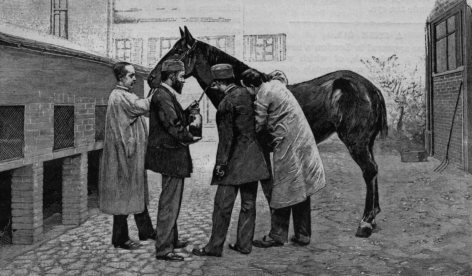 four men standing with a horse