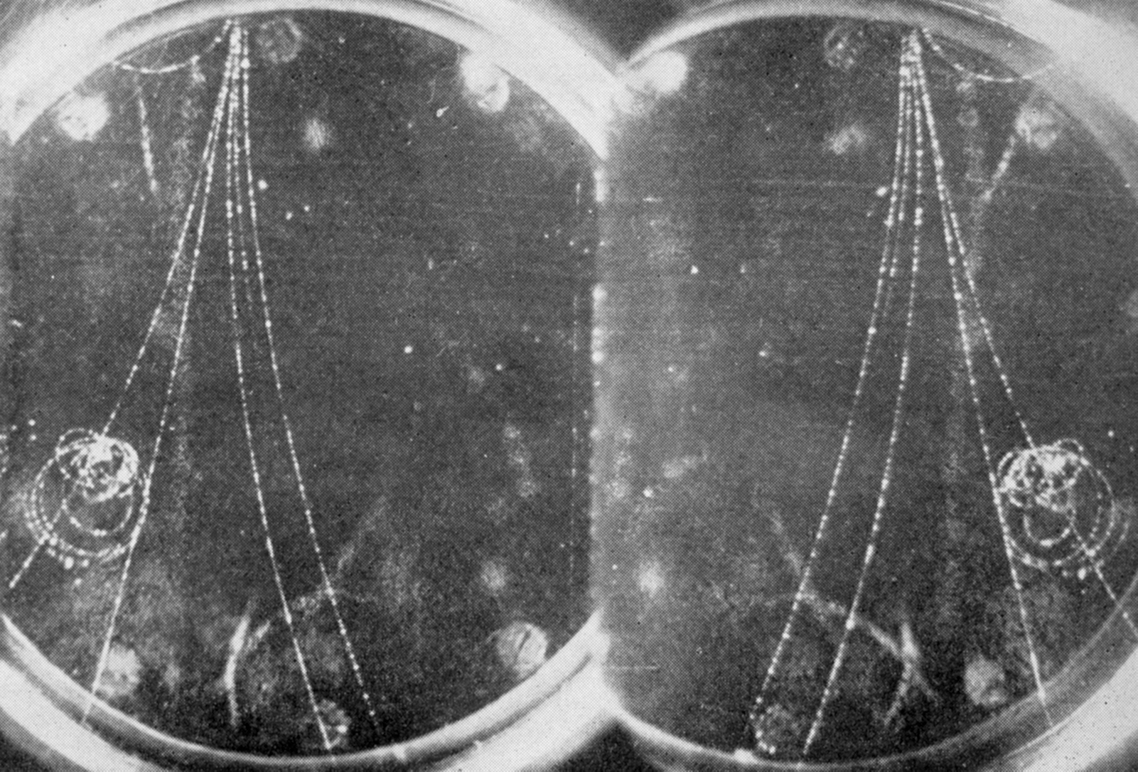 Bubble chamber image showing traces of subatomic particles