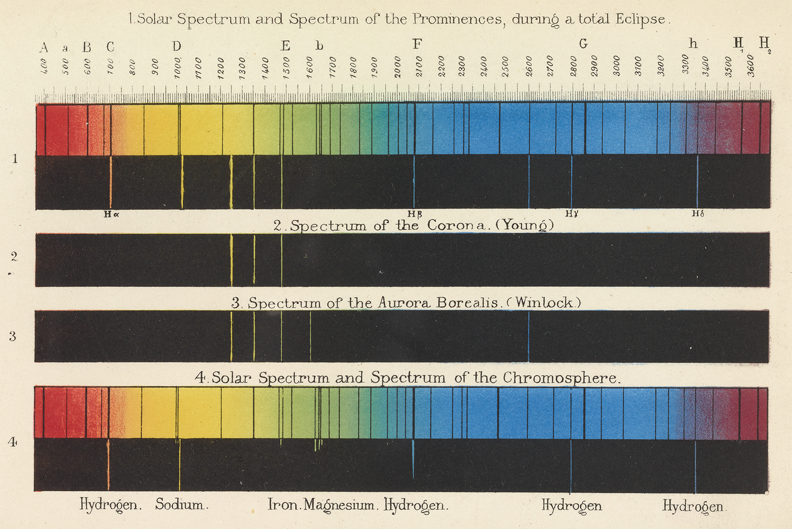 Color illustrations of solar spectra