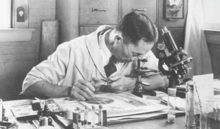 Seated man holding brush, peering into microscope