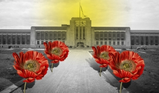 Photo illustration of poppy flowers and prison-hospital for addicts
