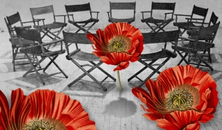 Photo illustration of poppy flowers and meeting chairs