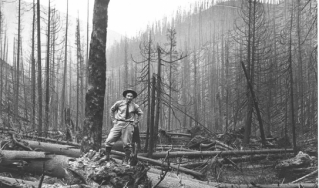 Archival photo of Forest Service after the 1910 fires.