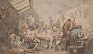 Cartoon of group of men dissecting bodies in an attic