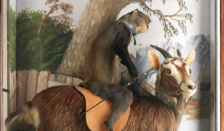 Walter Potter's Monkey Riding a Goat
