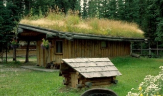 cabin with grass roof