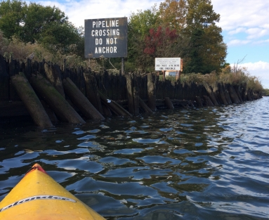 Roger Eadley-Pryor takes a guided kayak tour of the Schuylkill River led by Drexel chemistry professor Pete DeCarlo and University of Pennsylvania environmental humanities professor Bethany Wiggin.
