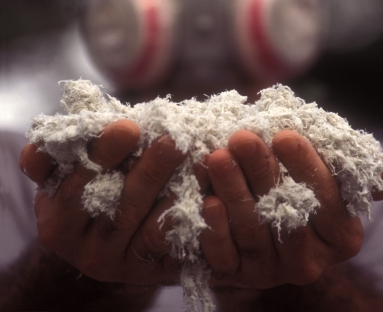 A worker holding asbestos