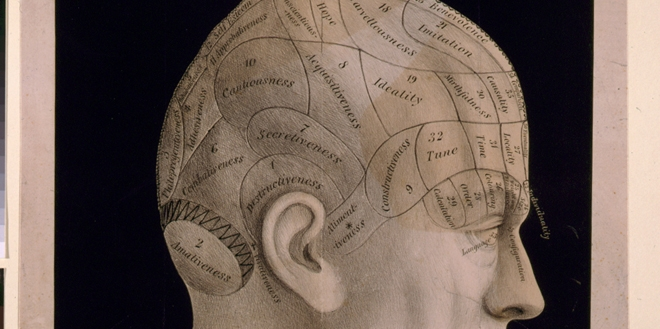 A phrenological map of the brain