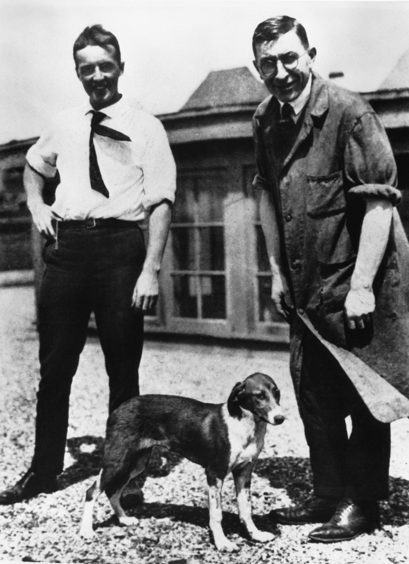 Frederick Banting and Charles Best on the roof of the University of Toronto's Medical Building in 1922. Dogs were used as experimental subjects in the insuli. F. G. Banting Papers, Thomas Fisher Rare Book Library, University of Toronto.