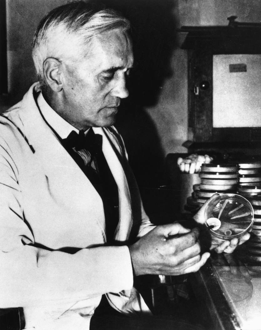 Alexander Fleming, holding a petri dish. Courtesy Bristol-Myers Squibb Corporation.