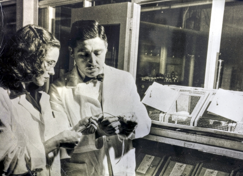 Helen and Alfred Free at the Miles-Ames Research Laboratory in 1948. The Frees developed the first dip-and-read test strip while at Miles Laboratories, now Bayer. Courtesy Bern Harrison/Bayer.