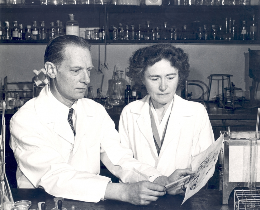 Carl F. and Gerty T. Cori in their lab at Washington University. Courtesy Becker Medical Library, Washington University School of Medicine.