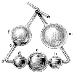 Five-bulbed apparatus, invented by Liebig.
