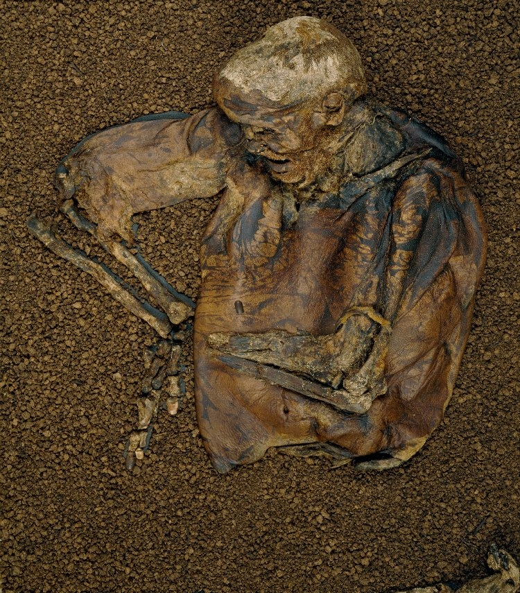 Remains of Lindow Man at British Museum