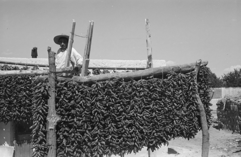 Drying peppers in New Mexico
