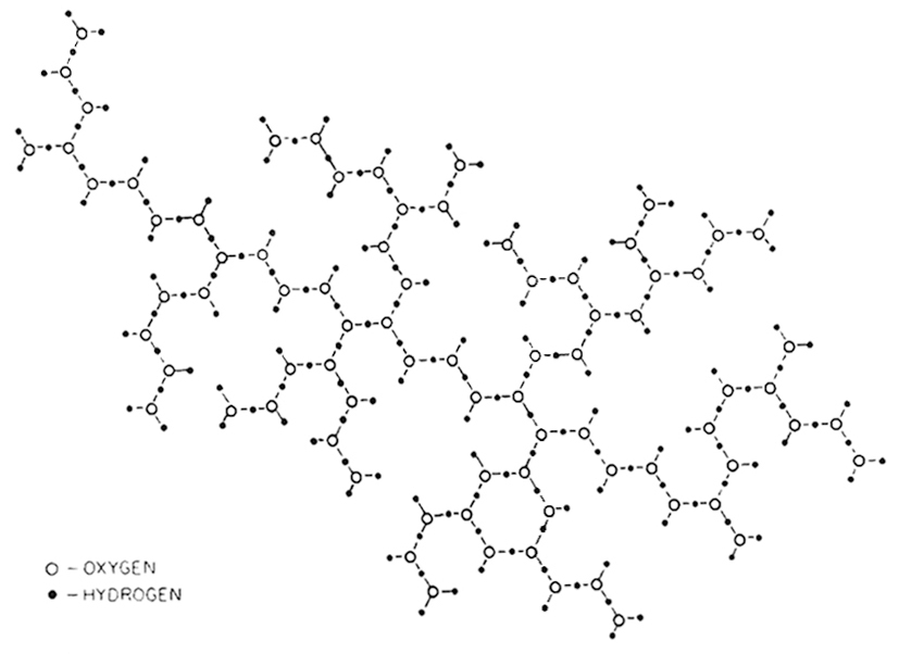 Two-dimensional molecular structure