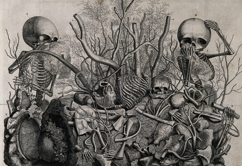 Engraving showing tableau of injected vessel and infant skeletons by Frederick Ruysch,