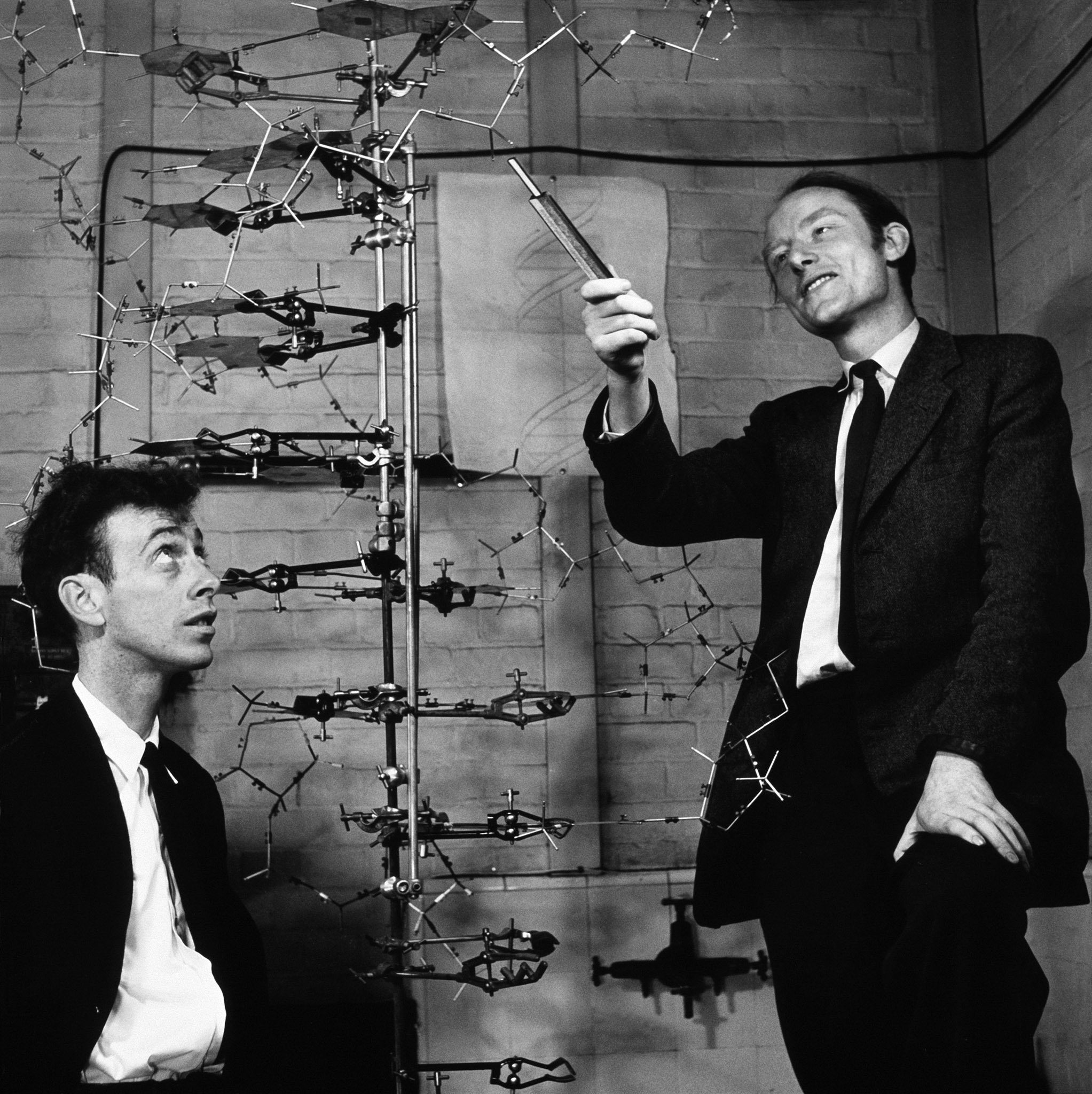 James Watson and Francis Crick with their DNA model at the Cavendish Laboratories in 1953.